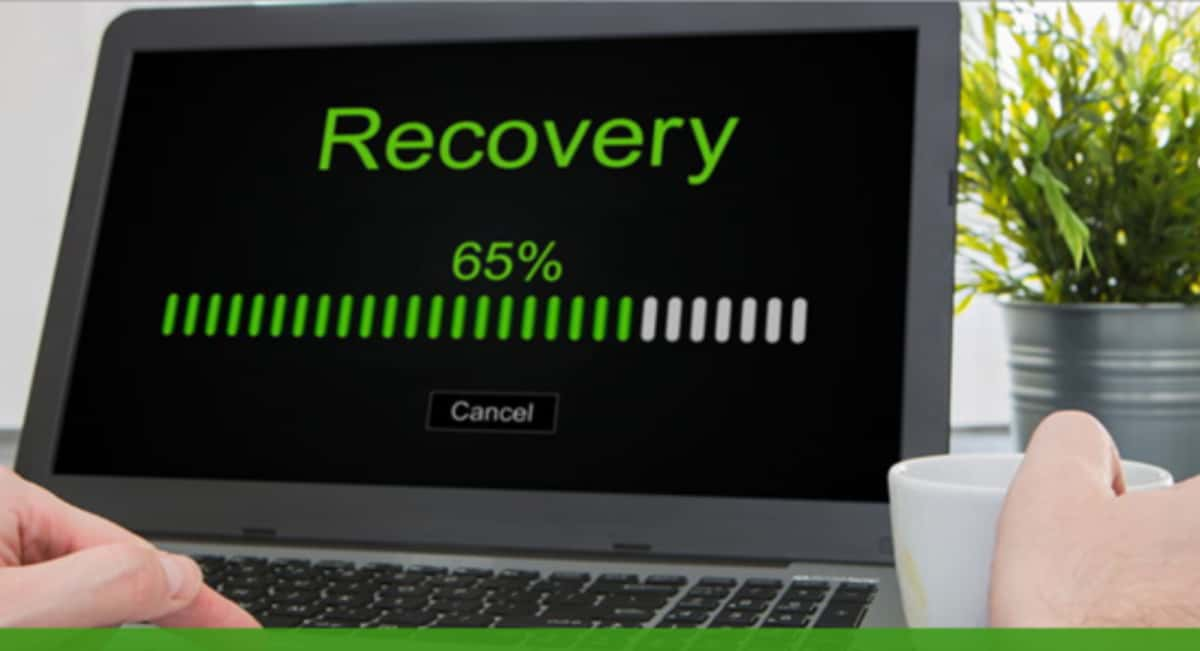 Taking A Brief Look At EaseUS Data Recovery Wizard Free